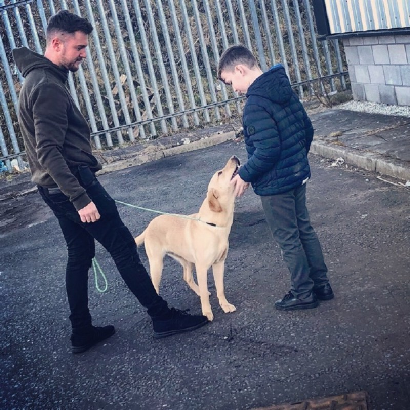 Find The Best Dog Trainers In Edinburgh Bark Com
