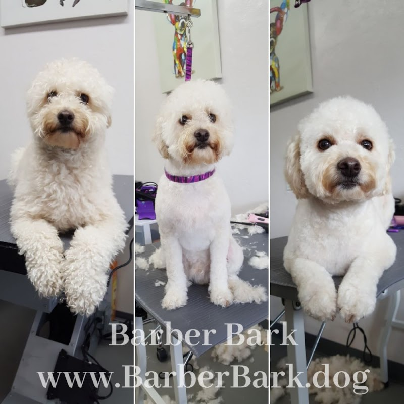 Barber Bark Pet Grooming Salon | Bark Profile and Reviews