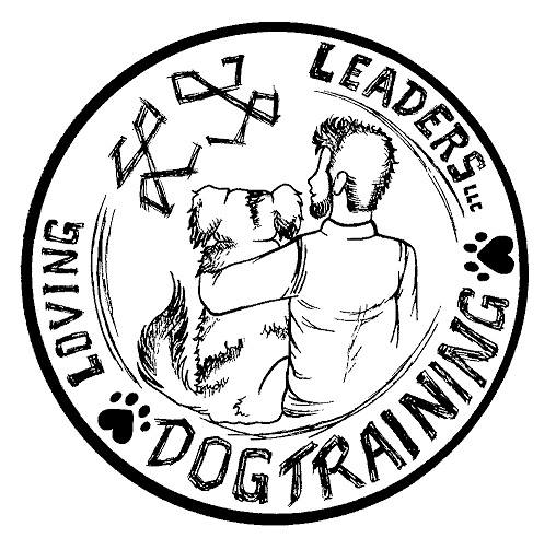 Find The Best Dog Trainers In Denver