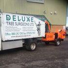 Deluxe tree surgeons ltd logo