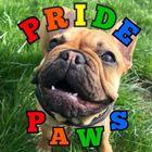 Pride Paws - Walking, Daycare & Training logo