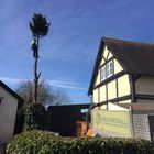 Weatherall Tree Surgery and Landscaping
