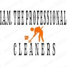 I ayala minnick the professional cleaners