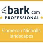Cameron Nicholls landscapes
