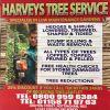 Harveys profile image