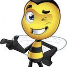 Bee-Safe CCTV LTD