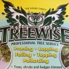 TREEWISE AND TOTAL LANDSCAPES profile image