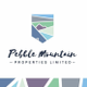 Pebble Mountain Properties Limited logo