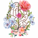 Blossoming Minds Therapy logo