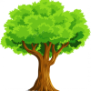 Z TREE Services profile image