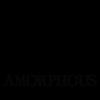 Amorphous New Media profile image