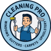 Cleaning Pro profile image