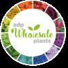 ADP Wholesale Plants profile image