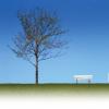 Urban Spaces Gardens Ltd. profile image
