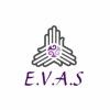 Executive Virtual Administration Services profile image