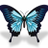 Assist Coaching Ltd profile image