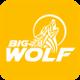 Big Wolf Marketing logo
