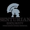 SENTURIAN SECURITY GROUP LTD profile image