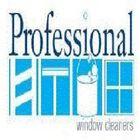 Professional Window Cleaners logo