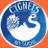 Cygnets School of Art profile image