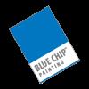 Blue Chip Painting Inc. profile image