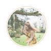 Lauren Alexander Weddings, Events & Design profile image