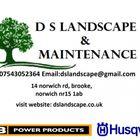Ds landscape and maintenance  logo