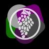 Grapevine Audio profile image