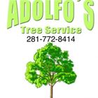 Top Rated #1 Houston Tree Service logo
