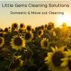 Little Gems Solutions profile image