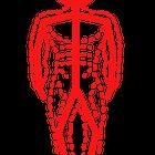 Human Integrated Performance logo