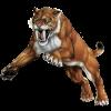 Sabertooth Fitness profile image