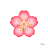 Flower Power Maids profile image