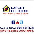 Expert Electric logo