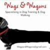 Wags & Wagons profile image