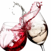 Wine Valley Tours profile image
