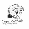 Carpet Cat Company profile image