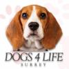 Dogs4Life profile image