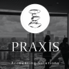 Praxis Accounting Solutions (Pty) Ltd profile image