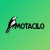 Motacilo web design profile image