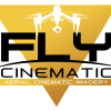 Fly Cinematic profile image