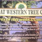 Great western tree and gardening care logo