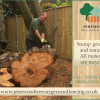 Pinewood tree surgery and fencing profile image