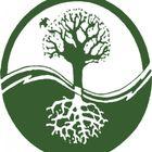 Pioneer Tree Care logo