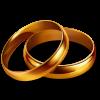 The Wedding & Event Shop profile image