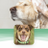 Siennas grooming services and products profile image