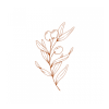 Clotilde Anenden Nutrition profile image