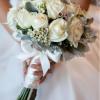 Amalfi Flowers profile image