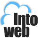 Intoweb Business logo