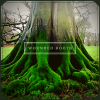 Wounded Roots profile image